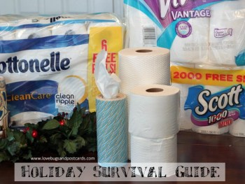 Holiday Survival Guide #HolidayNecessities