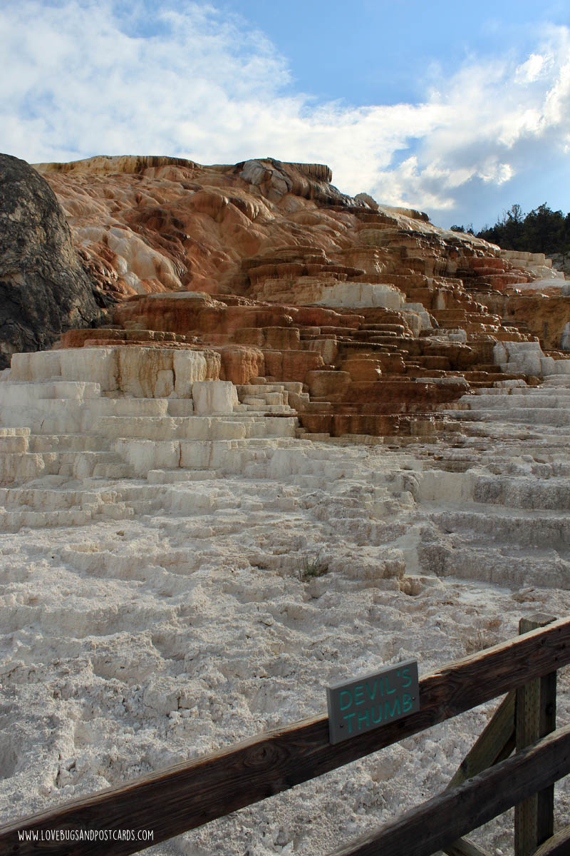 Mammoth Hot Springs Yellowstone National Park