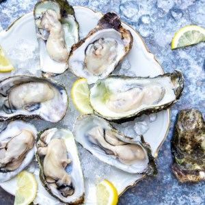 Oesters-3