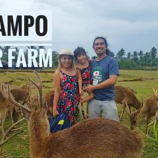 Bicol Deer Farm in Ocampo