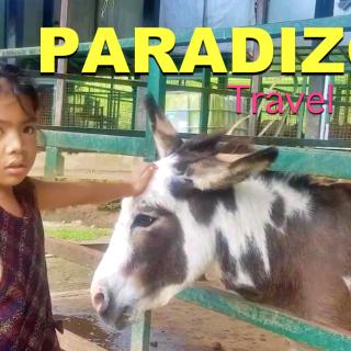 Paradizoo Tagaytay