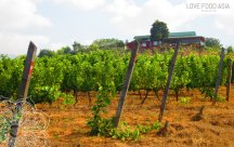 Weingut am Inle See