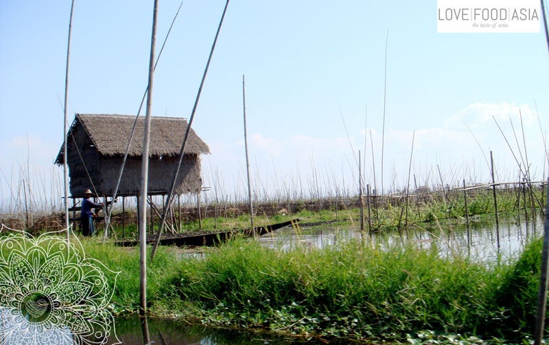 Houses on Inle Lake
