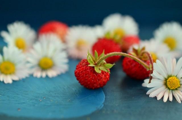 strawberries-800521_960_720