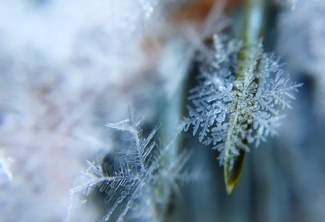 frost-1209402_960_720