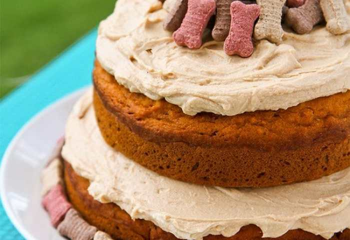 Spoiled Dog Cake Recipe Love From The Oven