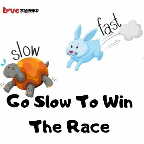 Go Slow To Win The Race