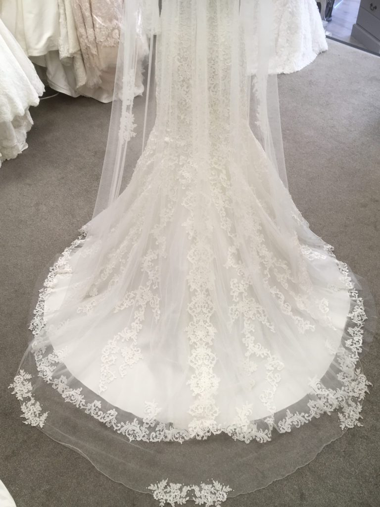 Wed4less wedding dress and winterberry veil