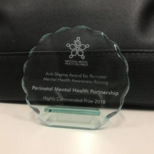 perinatal mental health partnership award