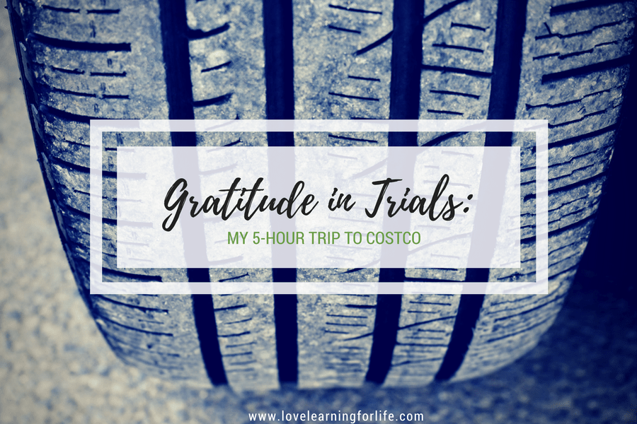 Gratitude in Trials:  My 5-Hour Trip to Costco