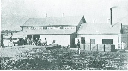 downs dairy co-op