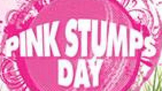 pink_stumps_day