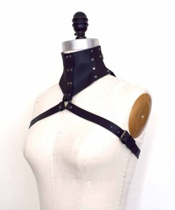 Black Leather Posture Collar Harness