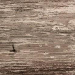Waldviertler Mohnzelten