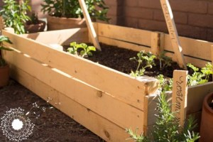 Resourceful Raised Garden Beds (from a fencing panel!)