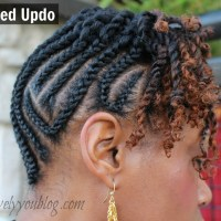 Natural Hair - Braid Updo with Twists + Lunch Date + Twitter Link up #16