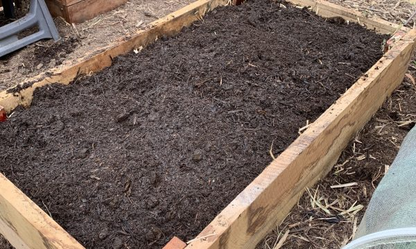 How to fill a raised bed on the cheap