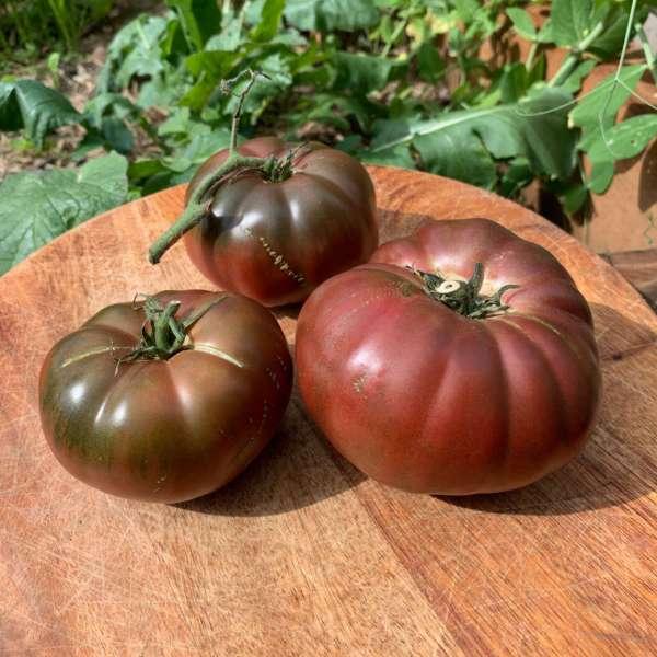 Black Krim Tomato Seeds buy online
