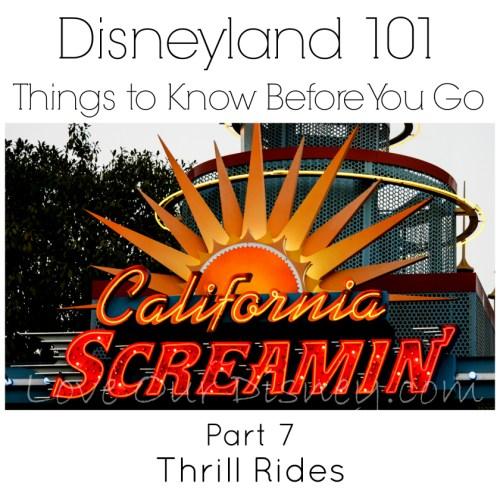 Disneyland 101 Part 7