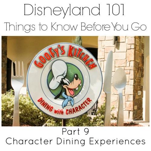 Disneyland 101 Part 9