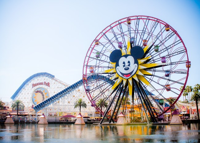 Myths That Make Us Believe Disney Is Too Expensive