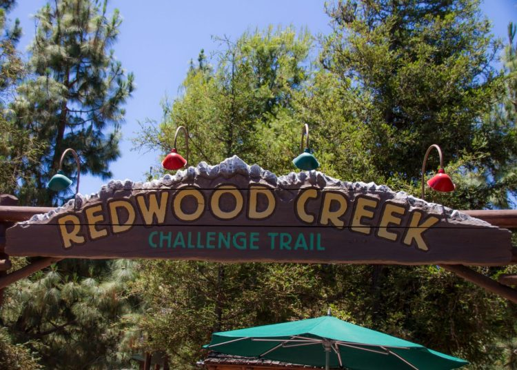 Redwood Creek Challenge Trail At Disney California Adventure in Disneyland
