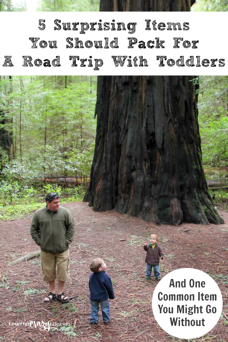 Taking a road trip with toddlers? Check out these 5 items you might never think about taking and why you should. Plus one common item you might go with out. Travel with kids.
