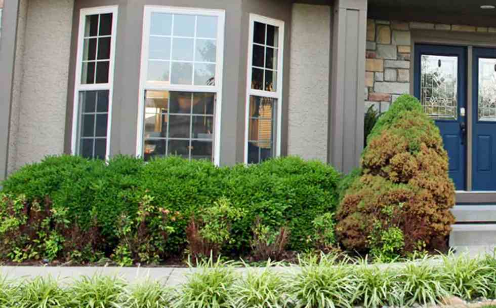 Ideas for front yard landscaping | A before and after