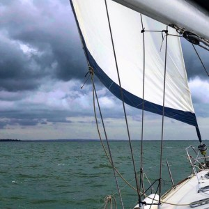 lovesail newsletter sprummer 2019