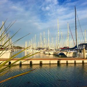 sailing charities in the uk