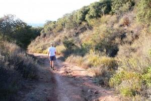 Mulholland trails; training Sunny 063