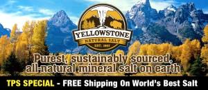 Yellowstone Homepage Banner