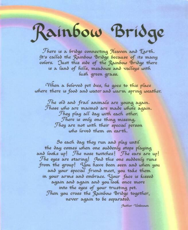 The Rainbow Bridge Poem