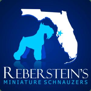 Rebersteins Final Logo Homepage Slider