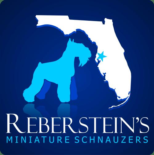 Miniature Schnauzer, Reberstein's Miniature Schnauzers Logo