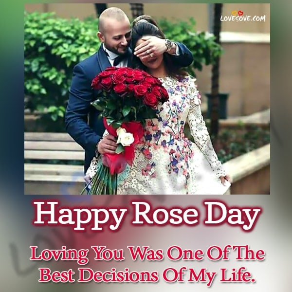 rose day shayari, happy rose day, happy rose day shayari, red rose shayari in english, rose day quotes, rose day status, rose day two line shayari, rose day images, rose day shayari in hindi for boyfriend, Happy rose day, 2 line shayari on rose, rose day, Rose day shayari, rose day shayari image, rose day special shayari, rose sad shayari, happy rose day 2 line status, happy rose day jaan, happy rose day quotes, happy rose day sms 2020, rose day 2 line shayari, rose day pic