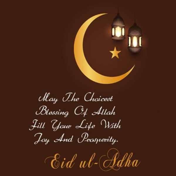 eid mubarak quotes, eid hindi quotes, Best Eid Al Adha Status, बकरा ईद मुबारक SMS