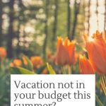 Vacation not in your budget this summer? Stay-cation & mini-vacation ideas