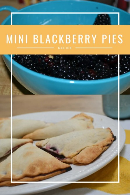 Looking for a quick and easy blackberry pie recipe, try these mini ones that are easy enough for a child to make.