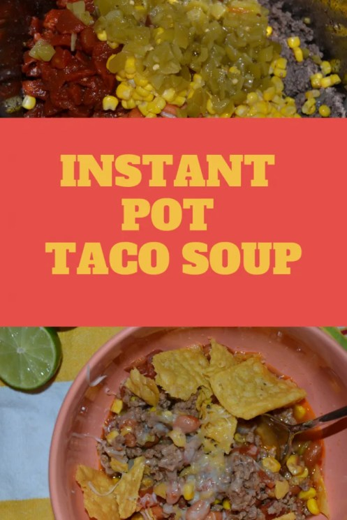 Easy, quick, tasty, budget friendly Instant Pot Taco Soup!