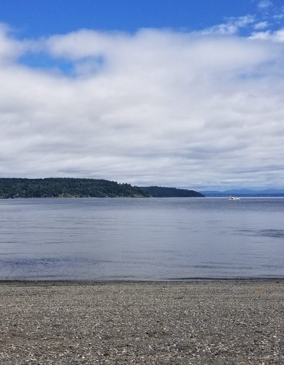 Public Areas to Play in the Water Near Pierce County