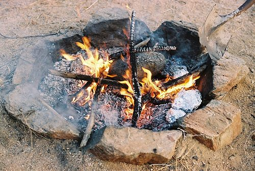 fire, cooking, backcountry