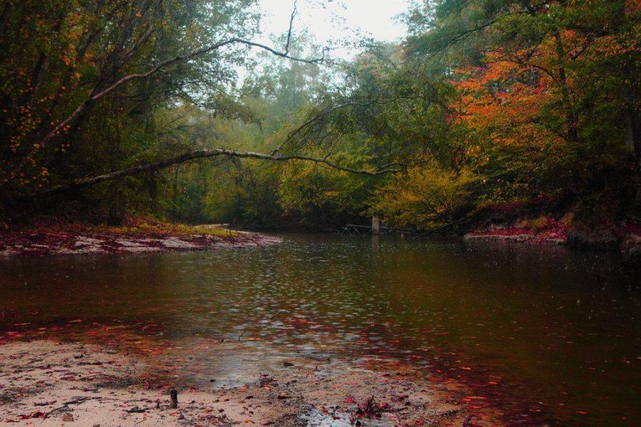 fall hiking tips, fall, hiking, autumn, trail