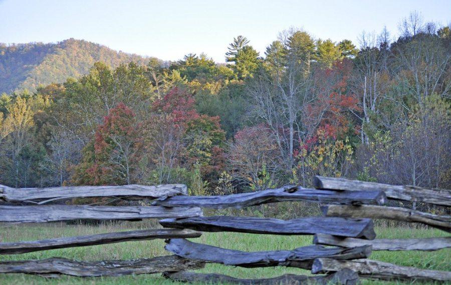 hikes, fall, fall foliage, autumn