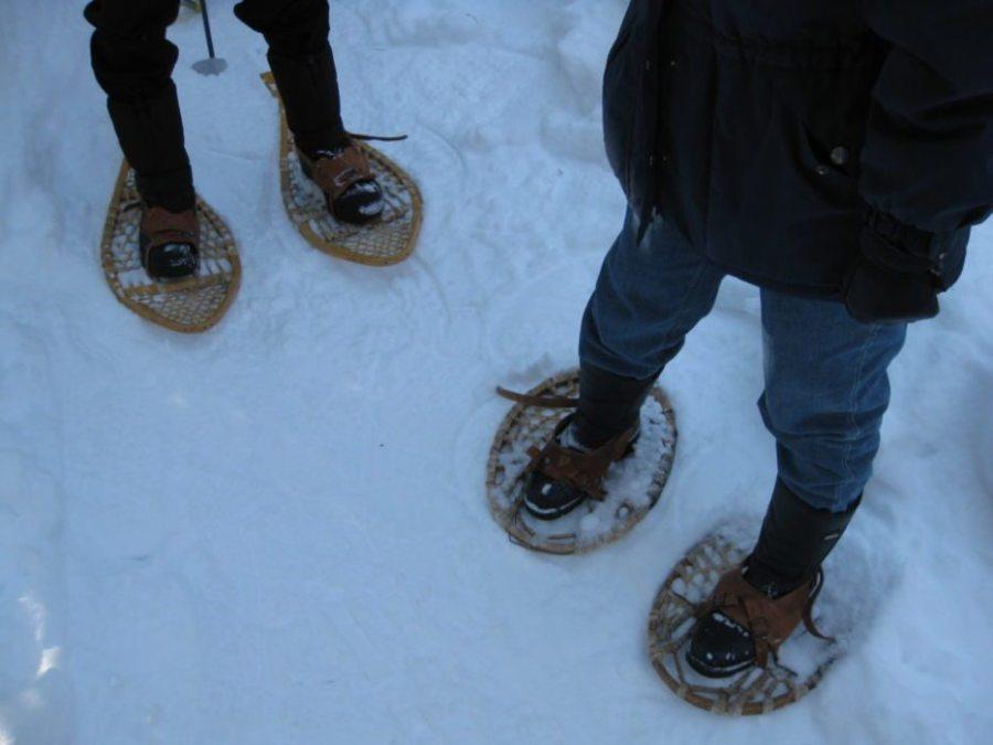 winter hiking, hiker, hiking, winter hikers