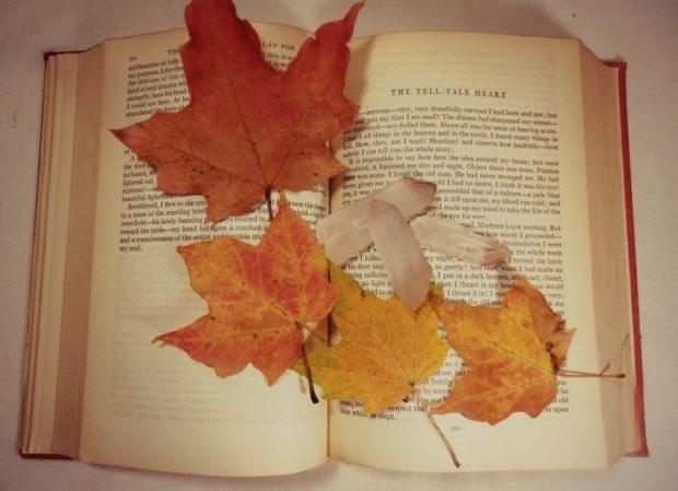 november-books