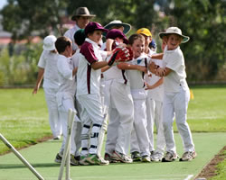mudgee-attractions-cricket