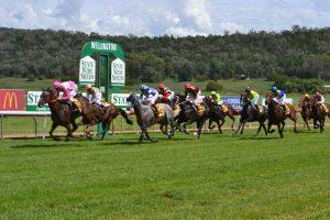 wellington-boot-races