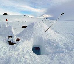 snow survival shelter