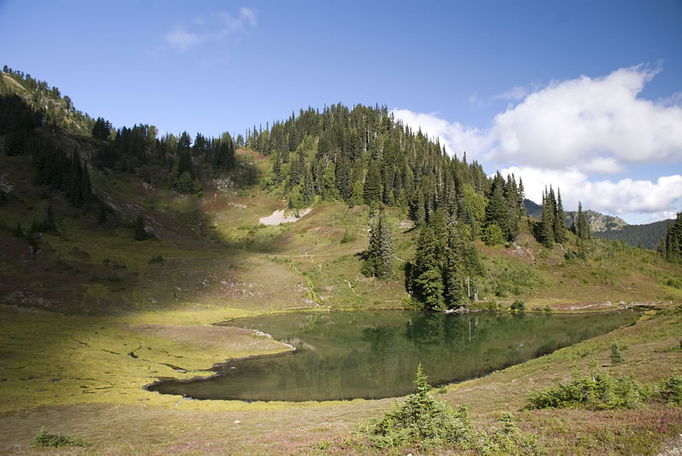 Heart Lake Olympic National Park